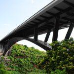 VERTIC's COMBILIGNE inclined lifeline system on the Pont de la Ravine Fontaine's bridge on the Reunion Island