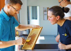 VERTIC biodiversite miel ISO 14001